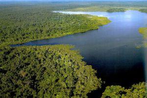 Loagan-Bunut-National-Park-Sarawak-Malaysia-001.jpg