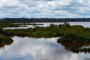 Loagan-Bunut-National-Park-Sarawak-Malaysia-002.jpg