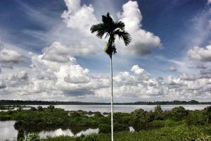 Loagan-Bunut-National-Park-Sarawak-Malaysia-003.jpg