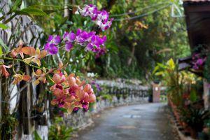 Lost-Paradise-Resort-Penang-Walkway.jpg