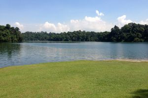 MacRitchie-Reservoir-Park-Singapore-005.jpg