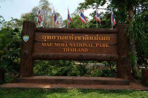 Mae-Moei-National-Park-Tak-Thailand-04.jpg