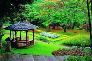 Mae-Sa-Valley-Garden-Resort-Chiang-Mai-Thailand-Exterior.jpg