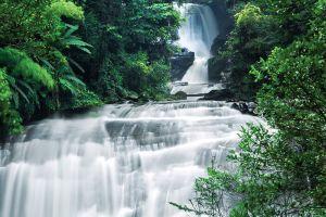 Mae-Sa-Waterfall-Chiang-Mai-Thailand-003.jpg
