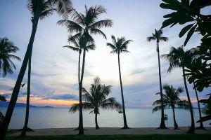 Maenam-Beach-Samui-Suratthani-Thailand-01.jpg