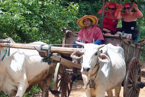Maetaeng-Elephant-Park-Chiang-Mai-Thailand-005.jpg