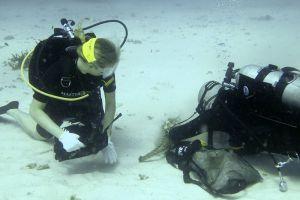Master-Divers-Koh-Tao-Thailand-001.jpg