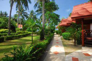 Morning-Star-Resort-Koh-Phangan-Thailand-Surrounding.jpg