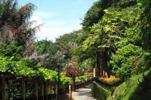 Mount-Faber-Park-Singapore-002.jpg
