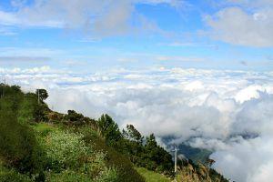 Mount-Santo-Tomas-Benguet-Philippines-003.jpg
