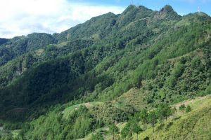 Mount-Santo-Tomas-Benguet-Philippines-006.jpg