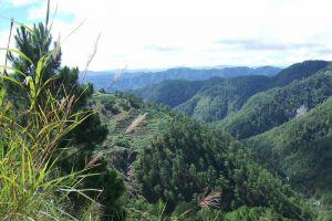 Mount-Santo-Tomas-Benguet-Philippines-011.jpg