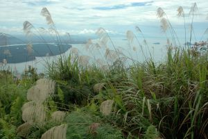 Mount-Santubong-Kuching-Sarawak-Malaysia-002.jpg