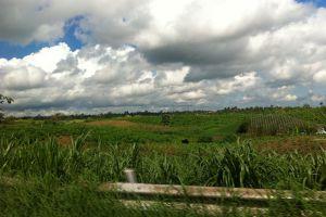 Mount-Sungay-Cavite-Philippines-002.jpg