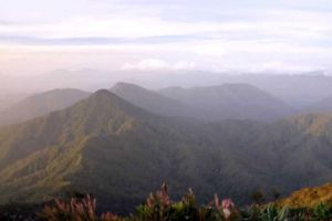 Mount-Yong-Yap-Kelantan-Malaysia-003.jpg