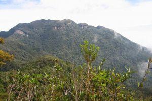 Mount-Yong-Yap-Kelantan-Malaysia-005.jpg