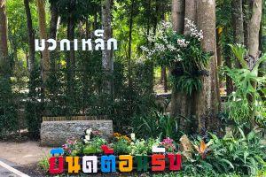 Muak-Lek-Arboretum-Saraburi-Thailand-02.jpg