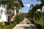 Nadivana-Serviced-Apartment-Krabi-Thailand-Surrounding.jpg