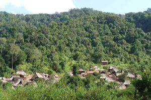 Nam-Ha-National-Protected-Area-Luang-Namtha-Laos-001.jpg