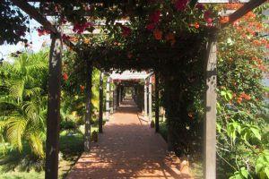 Nam-Ou-Riverside-Hotel-Resort-Luang-Prabang-Laos-Pathway.jpg
