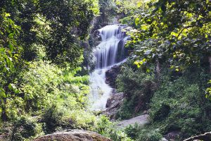 Namtok-Huay-Kaew-Chiang-Mai-Thailand-02.jpg