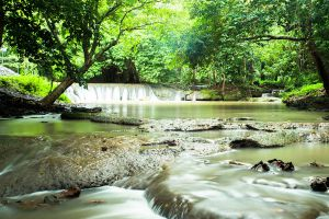 Namtok-Kapo-Forest-Park-Chumphon-Thailand-06.jpg