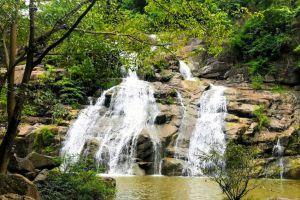 Namtok-Than-Thip-Forest-Park-Petchaboon-Thailand-02.jpg