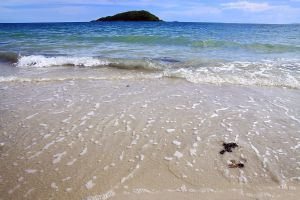 Nang-Rong-Beach-Chonburi-Thailand-03.jpg