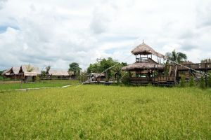 Napokae-Local-Cultural-Learning-Center-Phatthalung-Thailand-03.jpg