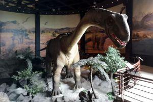 National-Geological-Museum-Pathumthani-Thailand-01.jpg
