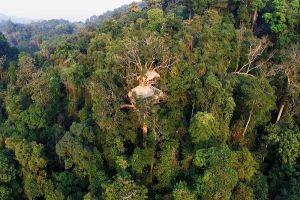 Nature-Reserve-Bokeo-Laos-002.jpg