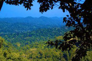 Nature-Reserve-Bokeo-Laos-003.jpg