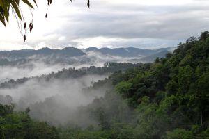 Nature-Reserve-Bokeo-Laos-005.jpg