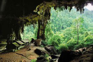Niah-National-Park-Sarawak-Malaysia-001.jpg