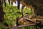 Niah-National-Park-Sarawak-Malaysia-002.jpg