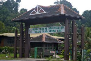 Niah-National-Park-Sarawak-Malaysia-005.jpg