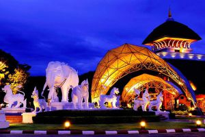 Night-Safari-Chiang-Mai-Thailand-001.jpg