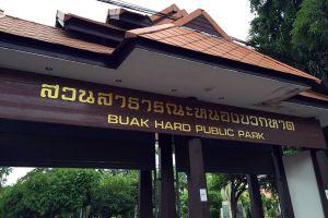 Nong-Buak-Haad-Public-Park-Chiang-Mai-Thailand-02.jpg