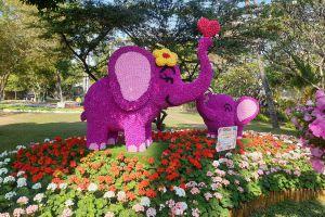 Nong-Buak-Haad-Public-Park-Chiang-Mai-Thailand-03.jpg