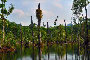 Nong-Thale-Krabi-Thailand-04.jpg