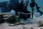 Ocean-Pro-Divers-Koh-Lipe-Satun-Thailand-004.jpg