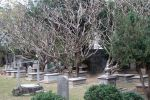 Old-Colonial-Protestant-Cemetery-Penang-Malaysia-005.jpg