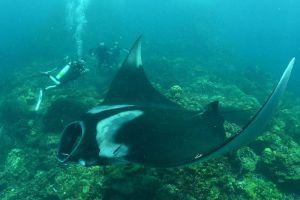 Palm-Beach-Divers-Koh-Lanta-Krabi-Thailand-004.jpg