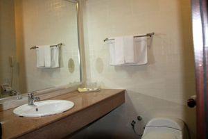 Palm-Garden-Hotel-Bandar-Seri-Begawan-Brunei-Bathroom.jpg