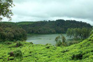 Patenggang-Lake-West-Java-Indonesia-003.jpg
