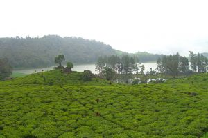 Patenggang-Lake-West-Java-Indonesia-006.jpg