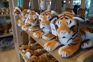 Pattaya-Tiger-Park-Chonburi-Thailand-06.jpg