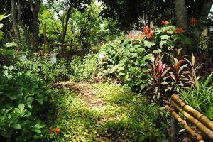 Pha-Tad-Ke-Botanical-Garden-Luang-Prabang-Laos-001.jpg