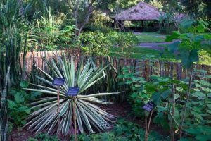 Pha-Tad-Ke-Botanical-Garden-Luang-Prabang-Laos-003.jpg