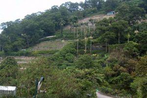 Pha-Tad-Ke-Botanical-Garden-Luang-Prabang-Laos-004.jpg